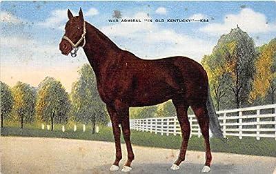 War Admiral Kentucky, KY, USA Old Vintage Horse Racing Postcard Post Card