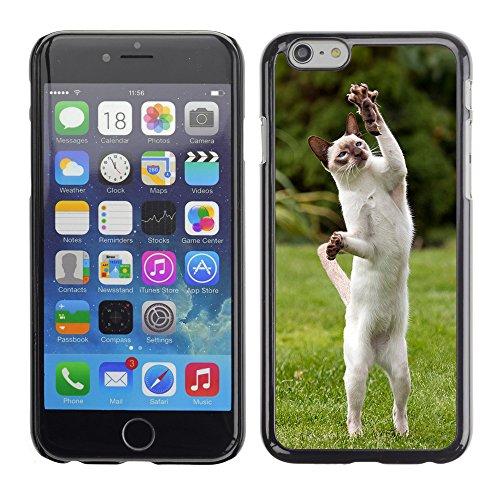 """Premio Sottile Slim Cassa Custodia Case Cover Shell // V00003107 chat jeu // Apple iPhone 6 6S 6G 4.7"""""""