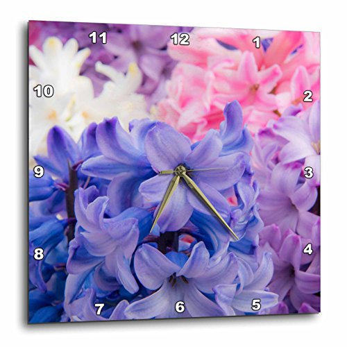 Netherlands, , Keukenhof Gardens -Upof Hyacinth Plant Wall Clock
