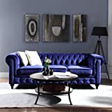 Divano Roma Furniture Velvet Scroll Arm Tufted Button Chesterfield Style Sofa, Navy