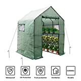 "LINLUX Large Portable Walk-in Plant Greenhouse with PE Cover, 2 Tiers 8 Shelves Waterproof Gardening Steeple Greenhouse, Window Version and Roll-Up Zipper Door (56"" W x 56"" D x 77"" H Inch)"