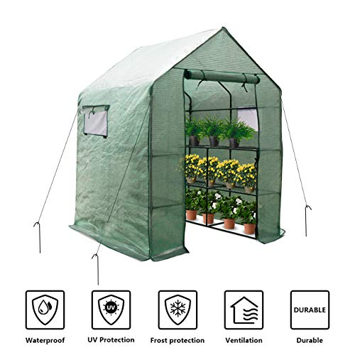 Large Portable Walk-in Plant Greenhouse with PE Cover, 2 Tiers 8 Shelves Waterproof Gardening Steeple Greenhouse, Window Version and Roll-Up Zipper Door (56″ W x 56″ D x 77″ H Inch)