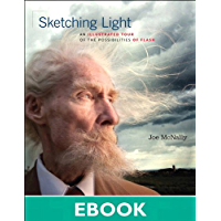 Sketching Light: An Illustrated Tour of the Possibilities of Flash (Voices That Matter) book cover