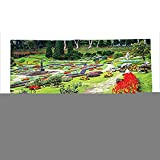 Custom printed Throw Blanket with Country Decor Collection Bromeliad at Mae Fah Luang Garden Lawn Flower Beds Evergreens Wooden Seat Image Lilac Red Green Super soft and Cozy Fleece Blanket