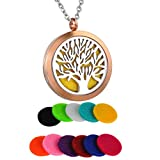 Best Necklaces - HooAMI Aromatherapy Essential Oil Diffuser Necklace - Stainless Review
