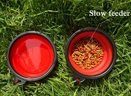 Dog Bowl 2 Pack Slow Feed Bowl and Water Bowl Silicone Portable Foldable Food Storage Containers