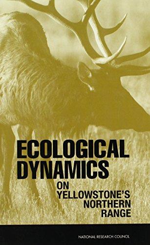 American Bison Range - Ecological Dynamics on Yellowstone's Northern Range