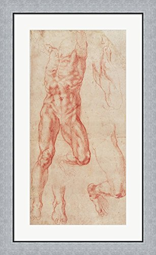 W.13r Study of a male nude, stretching upwards by Michelangelo Buonarroti Framed Art Print Wall Picture, Flat Silver Frame, 22 x 36 inches