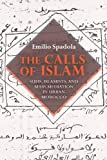 The Calls of Islam: Sufis, Islamists, and Mass Mediation in Urban Morocco (Public Cultures of the Middle East and North Africa), Emilio Spadola, 025301137X