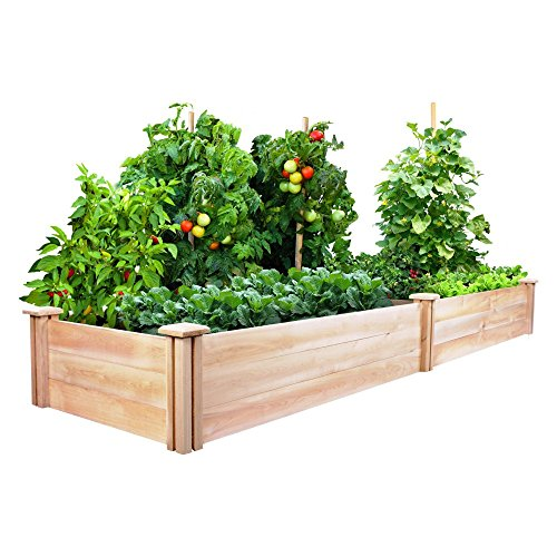 Rectangle Raised Flower Box Planter Bed 2 Tier Soil Pots: Planter Boxes: Amazon.com