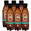 Kombucha Raw Organic Tea, Only 2g of Sugar, Probiotics & Prebiotic, Kosher, 8 oz (Pack of 6)