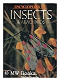 img - for Encyclopedia of insects & arachnids book / textbook / text book