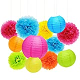 APLANET Set of 20 Assorted Rainbow Color Paper Pom Poms and Paper Lanterns, 5 Colors, for Party, Baby Shower and Wedding Decorations
