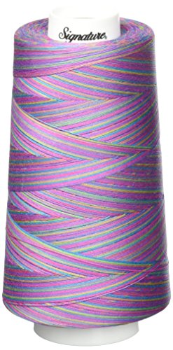 Signature 3 Ply Cotton Quilting Thread, 40wt/3000 yd, Variegated Fad 5 (Quilting Thread Variegated Signature)