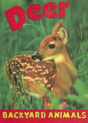 Read Online Deer (Backyard Animals) pdf epub