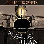 A Hole in Juan: An Amanda Pepper Mystery | Gillian Roberts