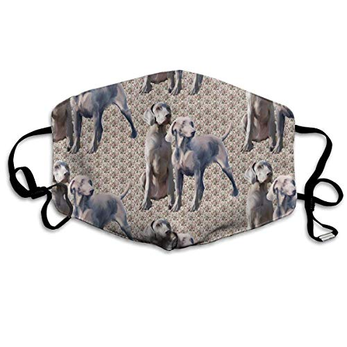 Dog Weimaraners Face Masks Breathable Dust Filter Masks Mouth Cover Masks with Elastic Ear Loop ()