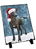 Let It Snow Happy Holidays Xoloitzcuintli Mexican Haireless Dog Christmas Photo Slate SLT0321