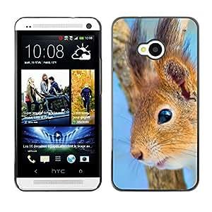 All Phone Most Case / Oferta Especial Duro Teléfono Inteligente PC Cáscara Funda Cubierta de proteccion Caso / Hard Case HTC One M7 // Happy Squirrel