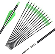 Archery Carbon Hunting Arrows for Compound & Recurve Bows - 26/28/30 inch Youth Kids and Adult Target Prac