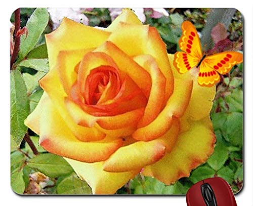 Mouse pad Butterfly on Yellow Rose Mouse pad Computer -