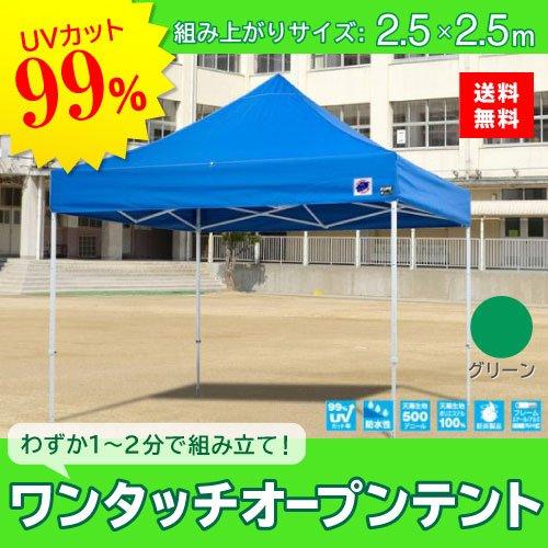 E-ZUP イージーアップ イージーアップテント 組み立てテント デラックス(スチールタイプ) [DX25-17GR] 2.5m×2.5m 天幕色:緑 グリーン 防水 防炎 紫外線カット99% B07BT1FQY5
