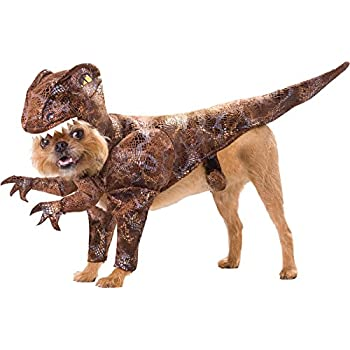 UHC Raptor Dinosaur Animal Planet Funny Theme Halloween Pet Dog Costume L  sc 1 st  Amazon.com & Amazon.com : UHC Raptor Dinosaur Animal Planet Funny Theme Halloween ...