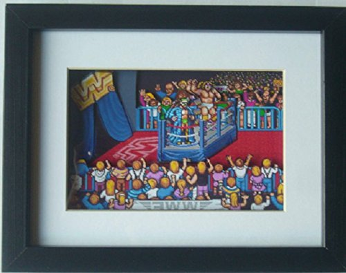 WWF Wrestlefest Ultimate Warrior & Randy Savage 3D Shadow Box Diorama Art by 8 Bit Boutique