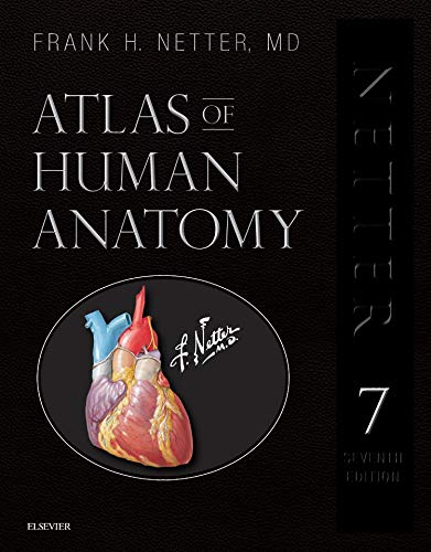 List of the Top 10 atlas human anatomy netter you can buy in 2020