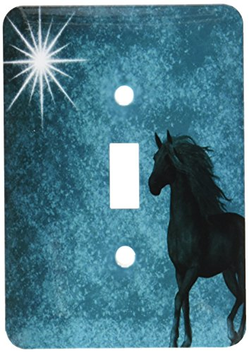3dRose lsp_164692_1 Beautiful Horse Aqua Grunge Sky Light Switch - Horse Light Covers Switch