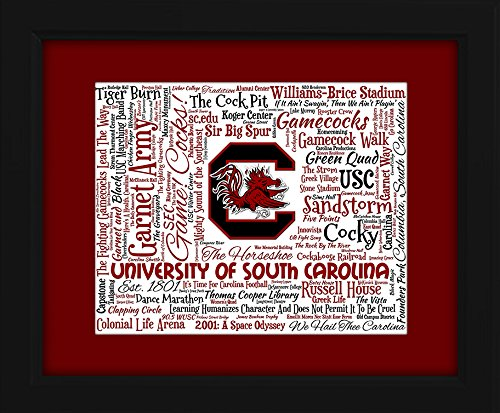 University of South Carolina 16x20 Art Piece - Beautifully matted and framed behind glass