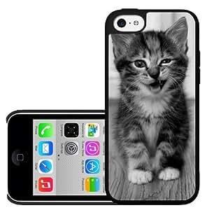 Cute Funny Kitten Kitty Cat iPhone 5c Hard Case