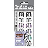 Midori Index Label Penguin (83013006)