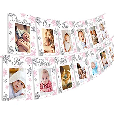 Snowflake Winter Onederland Photo Banner - Milestone Monthly Newborn to 12 Months Photo Banner for Winter Frozen 1st Birthday Decorations Pink: Toys & Games