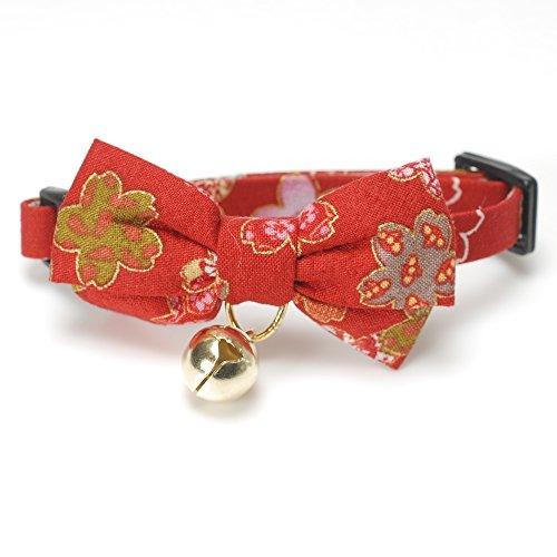 with Cat Collars design