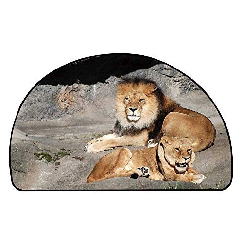 C COABALLA Zoo Comfortable Semicircle Mat,Male and Female Lions Basking in The Sun Wild Cats Habitat King of Jungle for Living Room,29.5