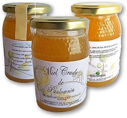 Miel de paulownia | 100% natural y pura | Producida en España ...