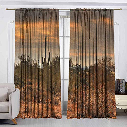 VIVIDX Curtains for livingroom/Bedroom,Saguaro,Dramatic Shady Desert View with a Storm Cloud Approaching Western Arizona Photo,Curtains for Living Room,W72x72L Inches Orange Green (Best Dove Hunting In Arizona)