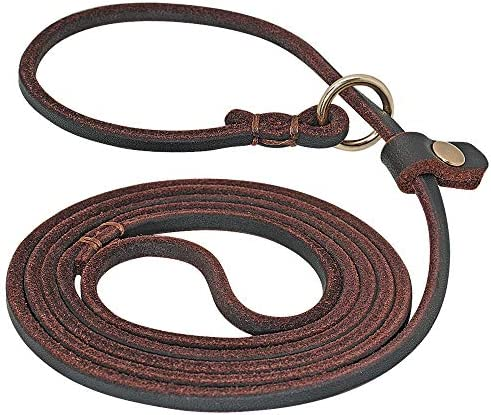 Beirui Slip Lead Dog Leash