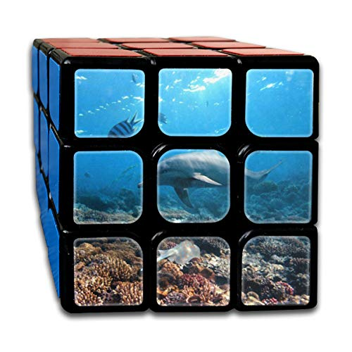 Speed Cube 3x3 Unique Magic Cube Sticker Dolphin Under The Water Puzzles Toys (56mm)
