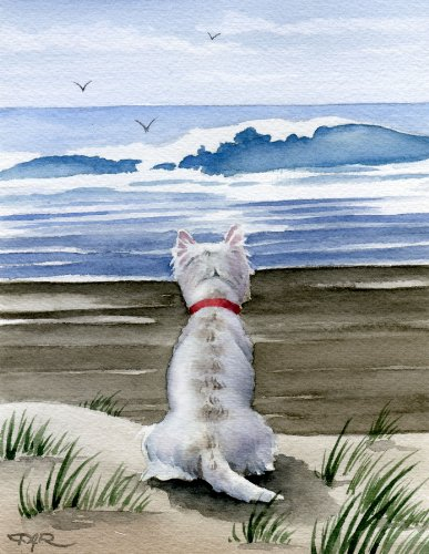(West Highland Terrier at the Beach Art Print by Artist DJ Rogers)