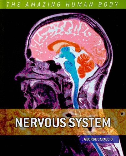 Nervous System (The Amazing Human Body) ebook