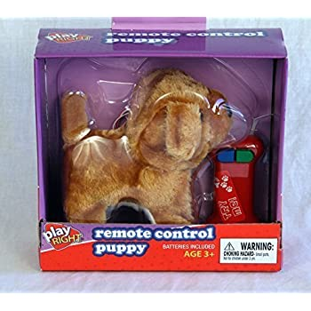 Amazon.com: Play Right Remote Control Puppy Brown: Toys