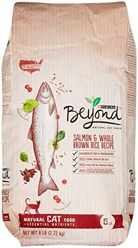 One Purina Beyond Salmon And Whole Brown Rice Recipe - 6 Lb