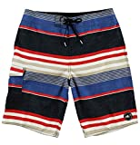 O'Neill Men's Santa Cruz Striped Boardshort