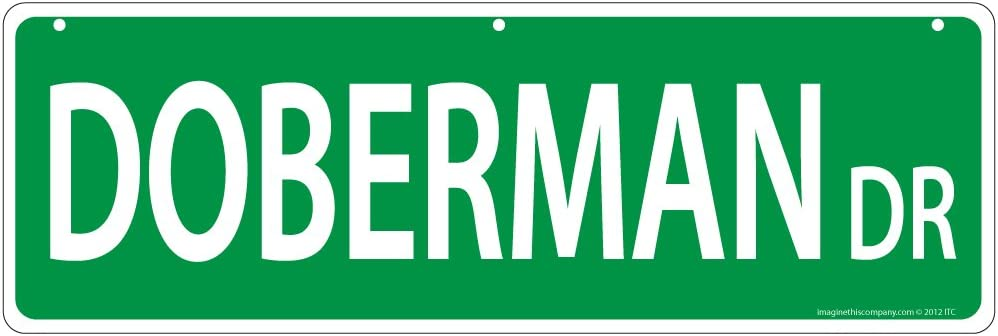 Imagine This, Street Sign, 6x18 Inches