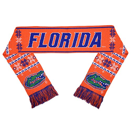 NCAA Florida Gators Light Up Scarf, One Size, Blue Florida Gators Ncaa Bean Bag