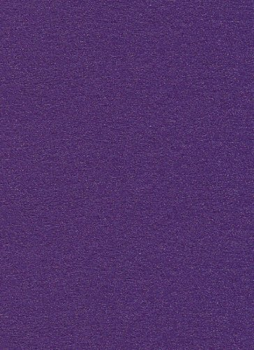 111lb Metallic Card Stock 8 1/2 x 11 - Curious Violette, 50 pack ()