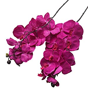 jiumengya 6pcs Artificial Moth Orchids Big Phalaenopsis Orchid 10 Heads Fuchsia Color cymbidium Orchid 92cm for Wedding Decorative Artificial Flowers (Fuchsia) 49
