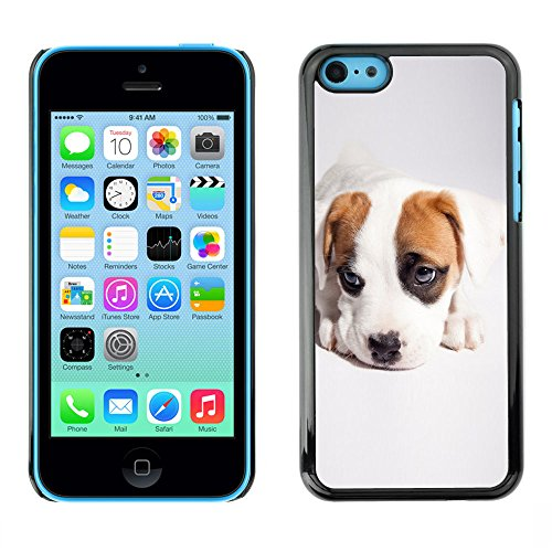 Omega Case PC Polycarbonate Cas Coque Drapeau - Apple iPhone 5C ( Cute Cool Puppy Dog )